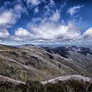 Victorian Alps by Judith Cahill