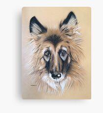 Cara the beautiful German Shepherd Canvas Print