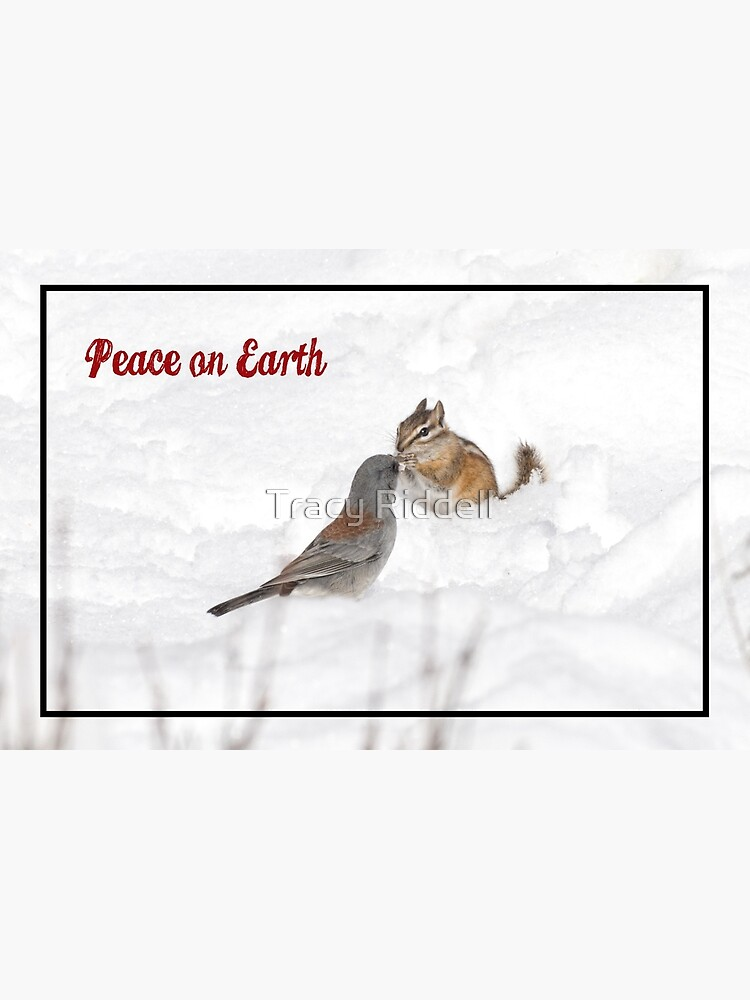 Peace on Earth by taos