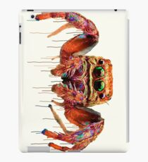 Spider Psychedelic iPad Case/Skin