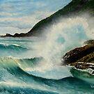 Crack Neck - Bateau Bay by Wayne Dowsent