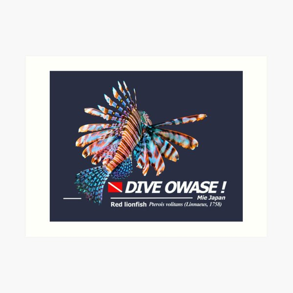 Cut-out Lionfish Print Dive Owase Art Print