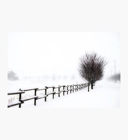 The Magic of Snow Photographic Print