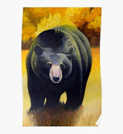 Black Bear In Autumn Poster