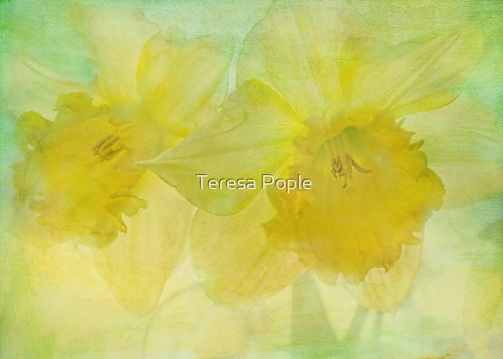 hint of spring by Teresa Pople