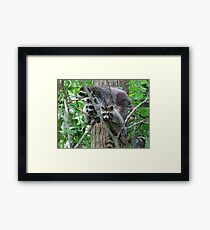 Mom, The Camera Is Over There! Framed Print