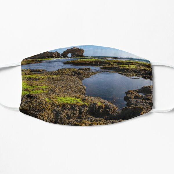 Bridgewater Bay low tide Mask