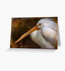 Finer Feathered Friends Greeting Card