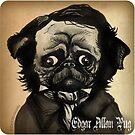 Edgar Allan Pug by Zack Morrissette