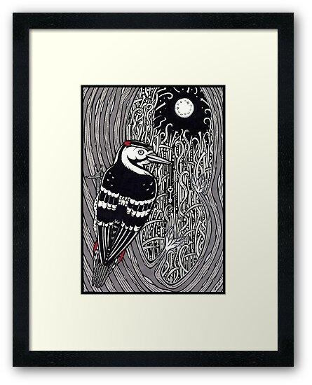 Woodpecker by Anita Inverarity