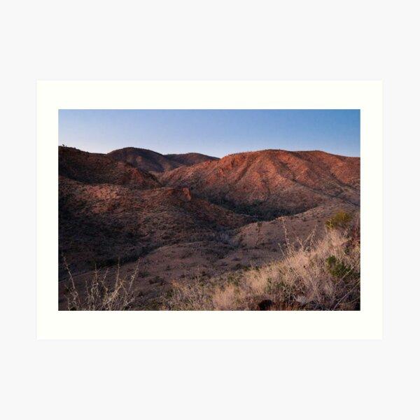 Dawn near Grindells Hut, Flinders Ranges SA Art Print