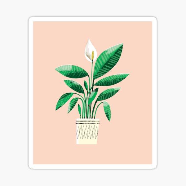 Peace Lily Plant Sticker