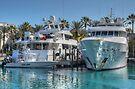 Yachts docked at the Atlantis Marina in Paradise Island, The Bahamas by Jeremy Lavender Photography