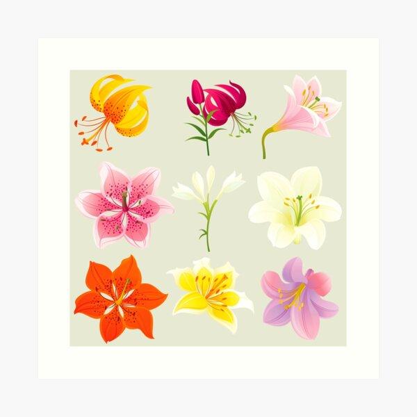 Colorful Lilies Art Print