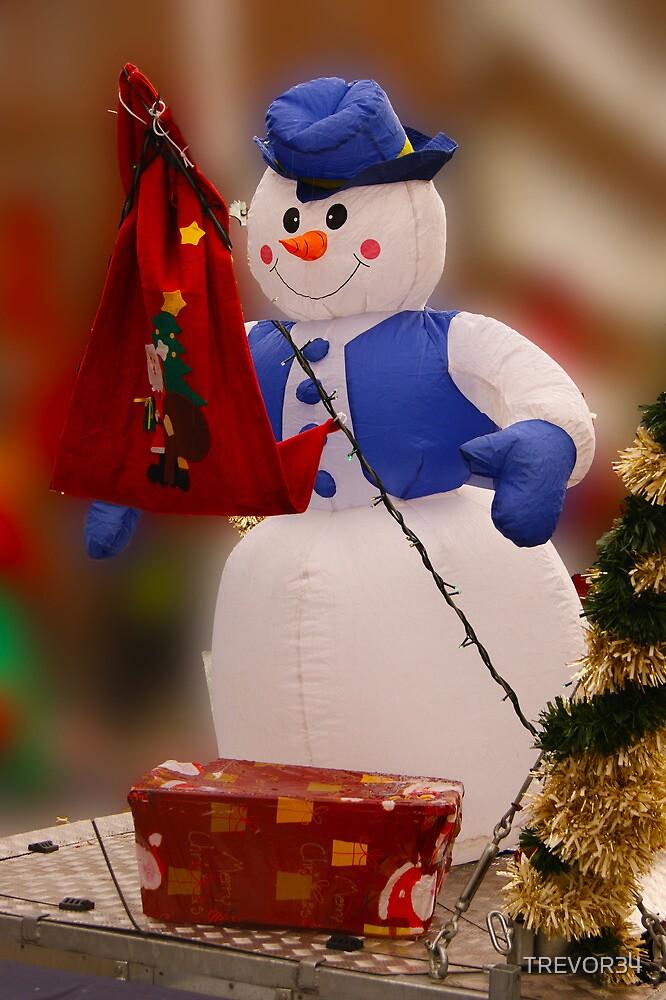 Not So Frosty ! by TREVOR34