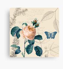 Peach Rose Vintage Canvas Print