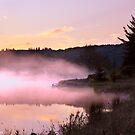 Misty Dawn Spruce Knob Lake by Deb Snelson