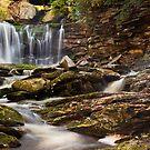 Elakala Falls, Blackwater Falls State Park by Deb Snelson