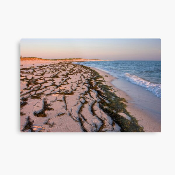 Beach on Tangier Island at Sunset Metal Print