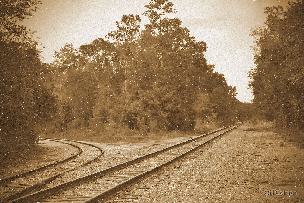 The Old Time Railroad by Bill Colman