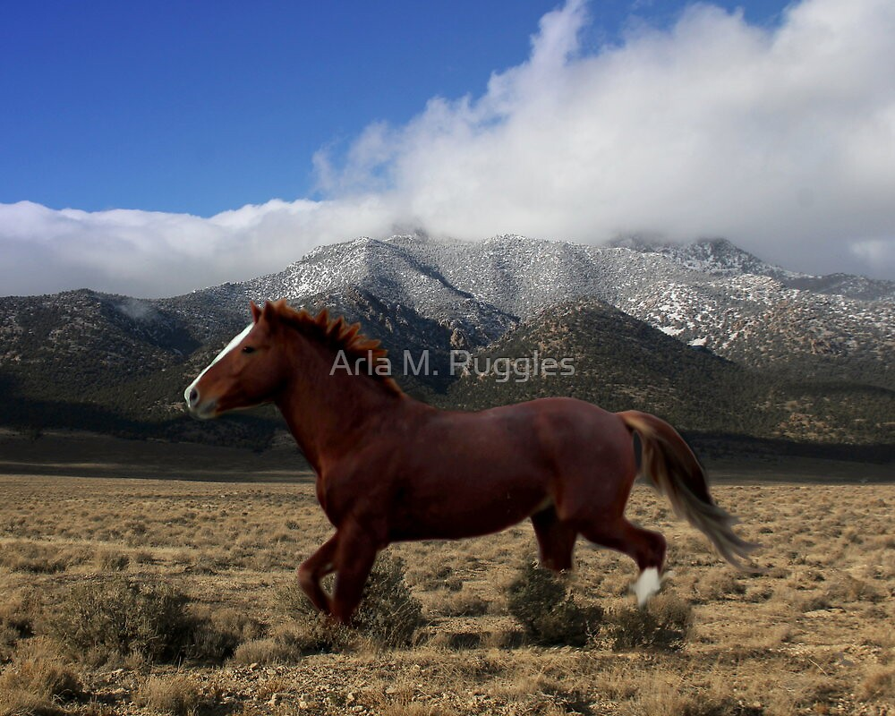 Legendary Red by Arla M. Ruggles