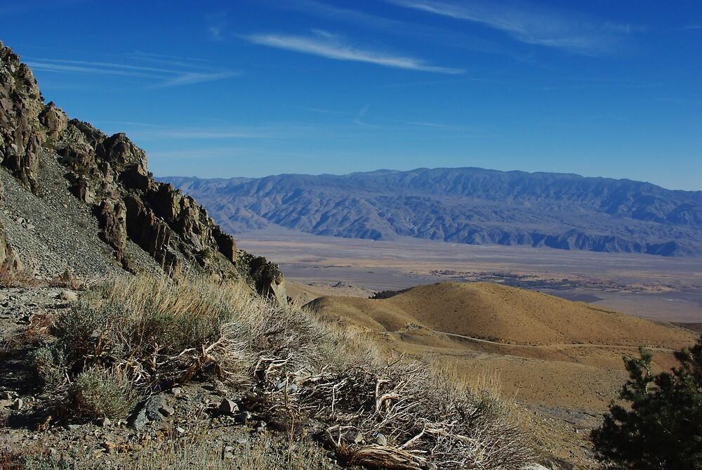 Along Onion Valley Road, Sierra Nevada, California by Claudio Del Luongo