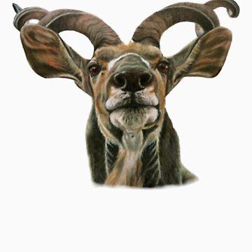 Greater African Kudu by Skaylaki