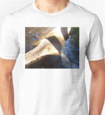 Flow Form Fountain, Rudolf Steiner College T-Shirt