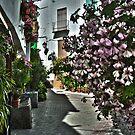 Lanjaron street view by Alfonso Fernandez