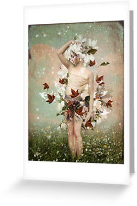 Little Snowflake by Catrin Welz-Stein