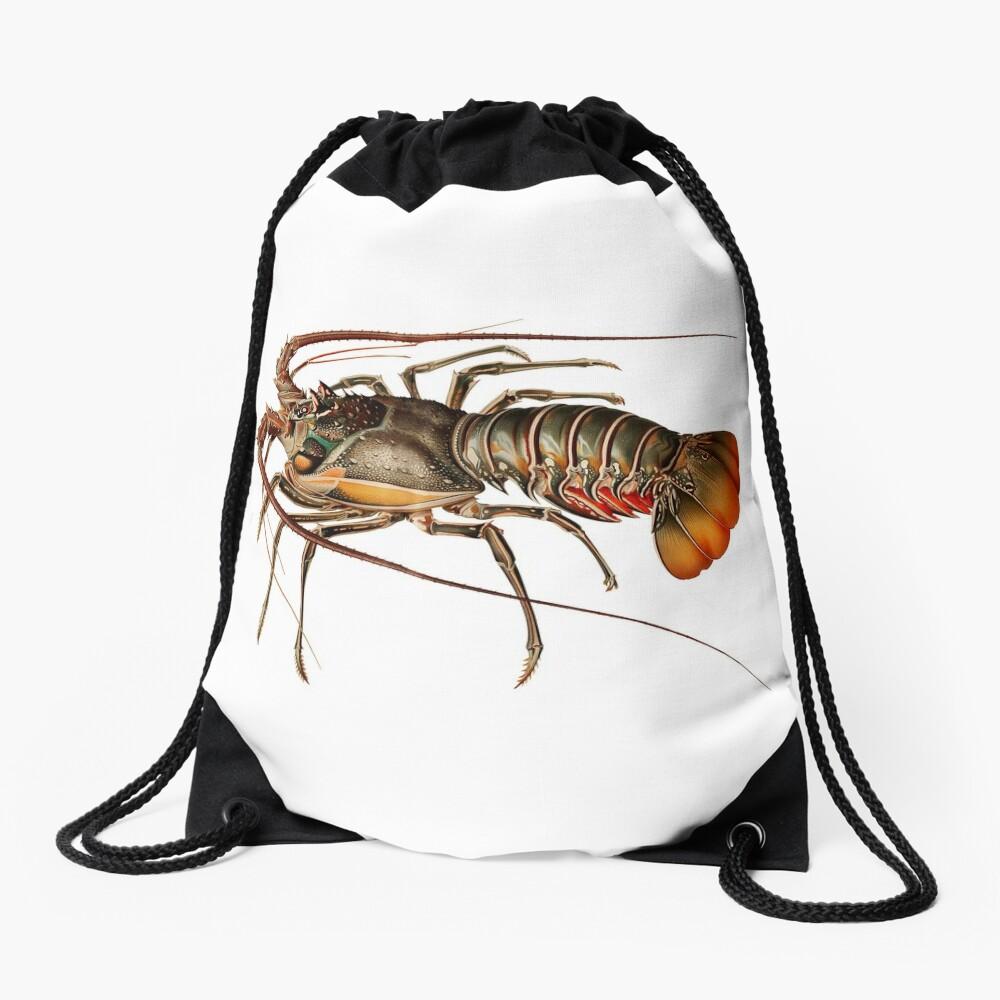 Vintage Spiny Lobster Drawstring Bag