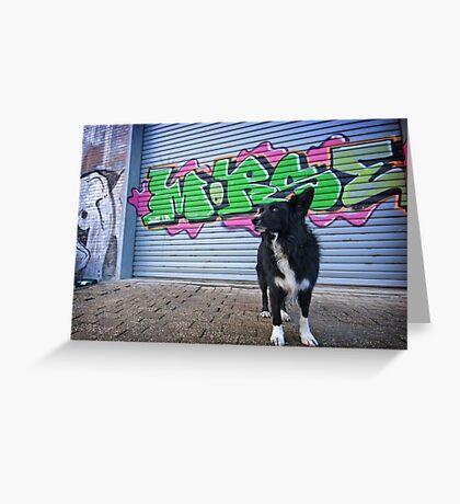 Graffiti Dog Greeting Card