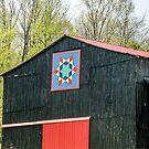 Kentucky Barn Quilt - 2 by Mary Carol Story