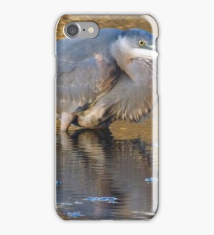 Great blue heron ready to strike iPhone Case/Skin