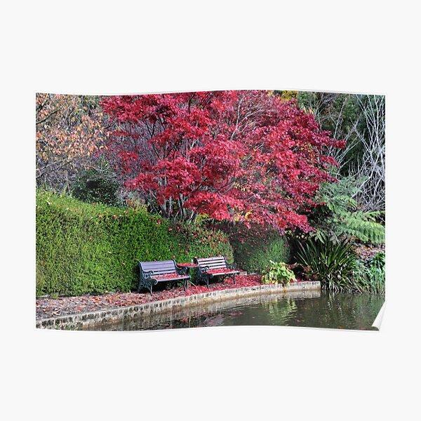 Quiet Corner - Bisley Garden - Mt Wilson NSW Poster