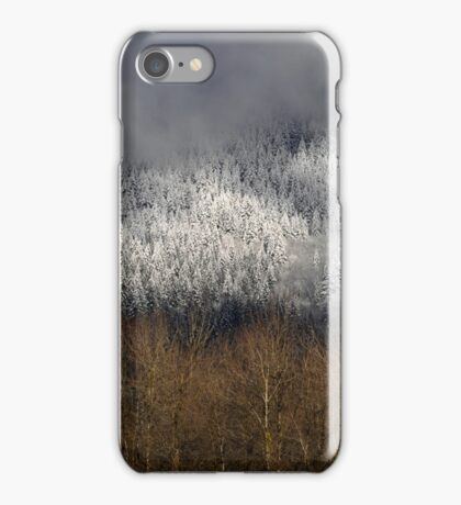 Frosted in the Valley iPhone Case/Skin