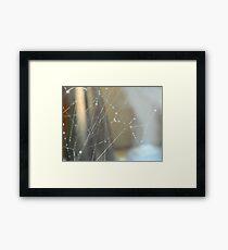 Web Framed Print