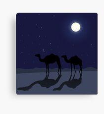 Dromedary camels in Sahara desert night Canvas Print