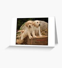 Look straight ahead! Greeting Card