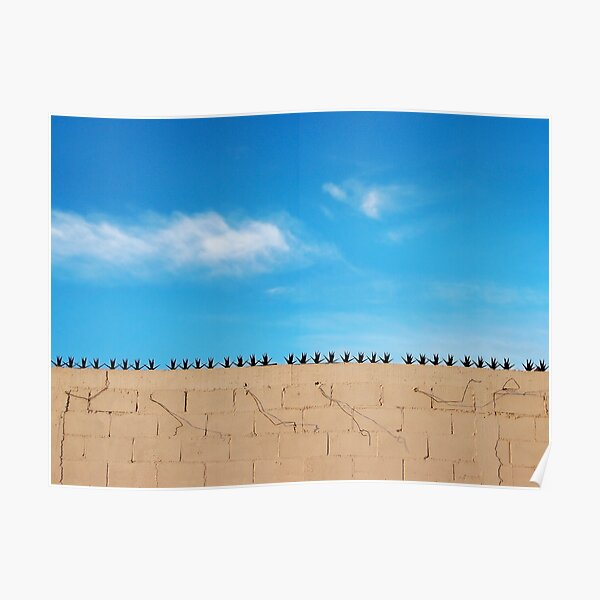 Prickly Wall Poster