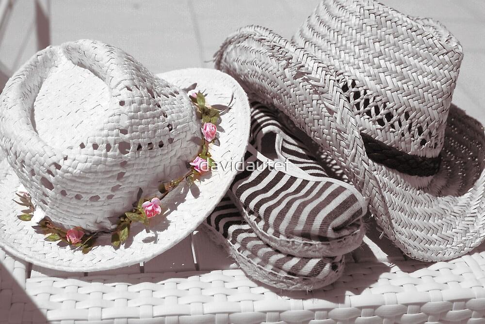 les 2 chapeaux by davidautef