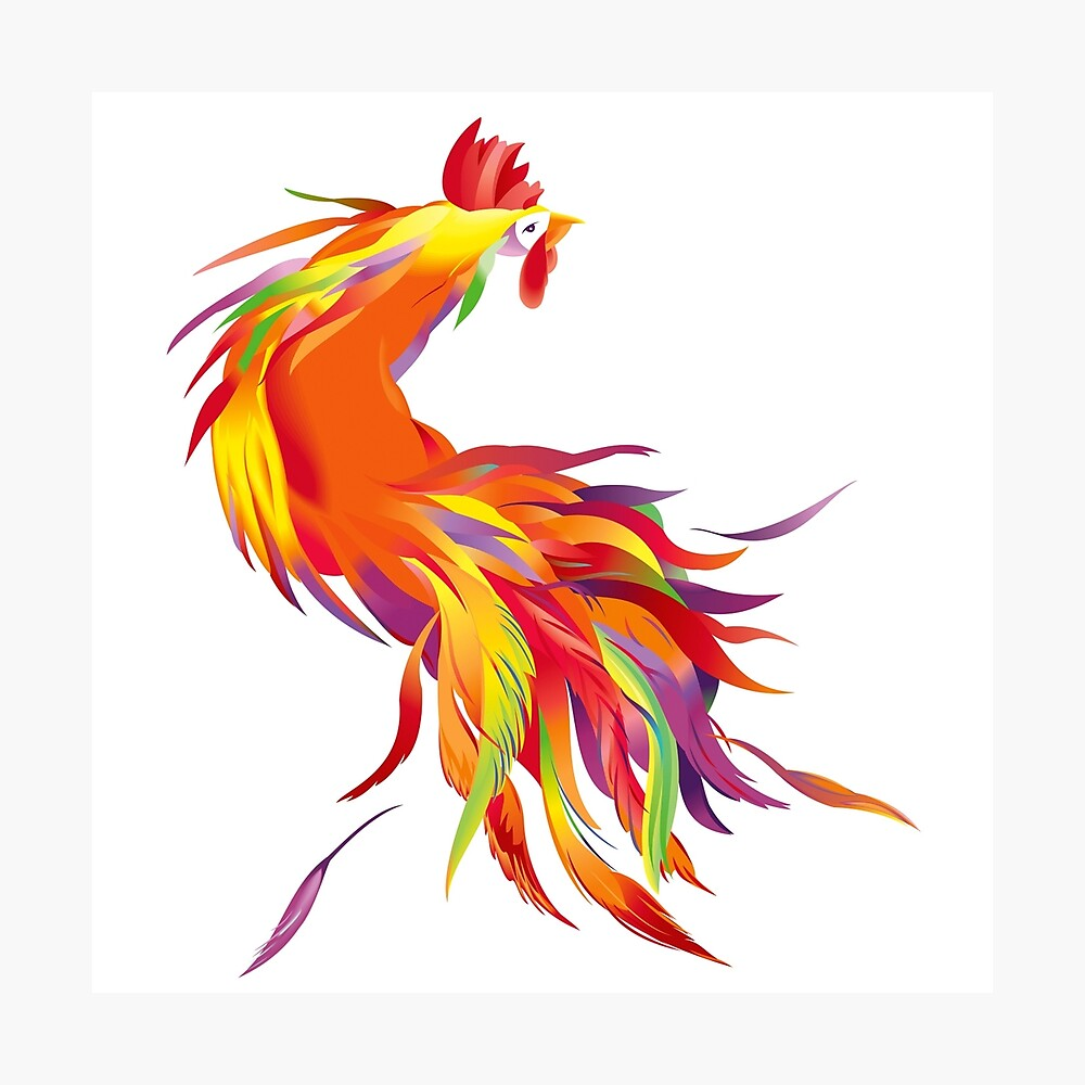 Red Cock Photographic Print