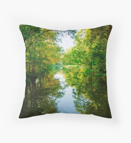 The D & R Canal Throw Pillow