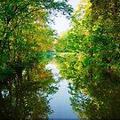 The D & R Canal by Debra Fedchin