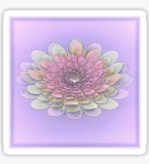 Softness Sticker