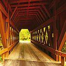 Wisconsin Covered Bridge iPad Case by ipadjohn
