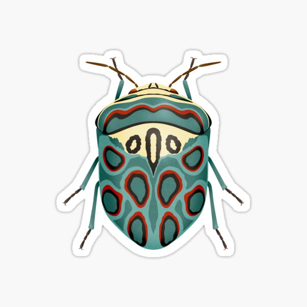 Picasso Beetle - Graphic Blue & Red Beetle Bug Sticker