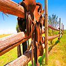 Fence Saddle iPad Case by ipadjohn