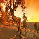 Sunset On The Rim iPad Case  by ipadjohn