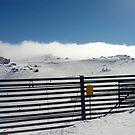 Mt Kosciusko by Rhys Davis